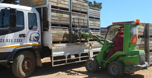 RoughTerrainForklift Avant Agriculture South Africa